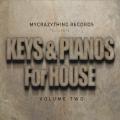 Keys & Pianos for House 2